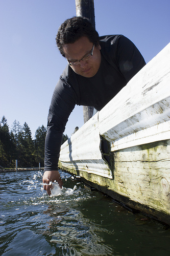 Nisqually natural resources technician Jimsan Dunstan samples water at Johnson Point in Olympia