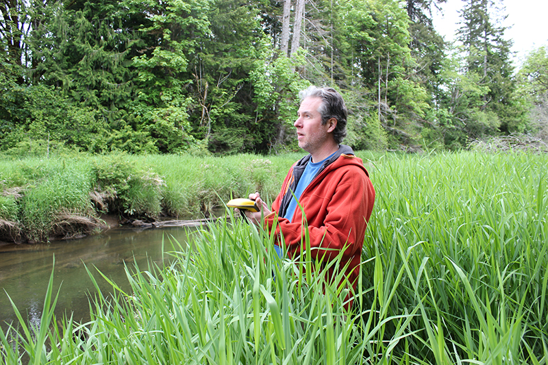 Squaxin Island Tribe, partners, winning battle with invasive weeds