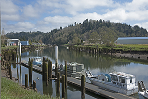 Quinault Pride Seafood Buys Stake in Pacific Harvest Seafood