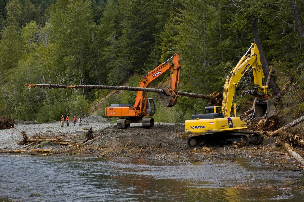 Treaty tribes leverage almost $9 million in grants to restore salmon habitat (and provide jobs)