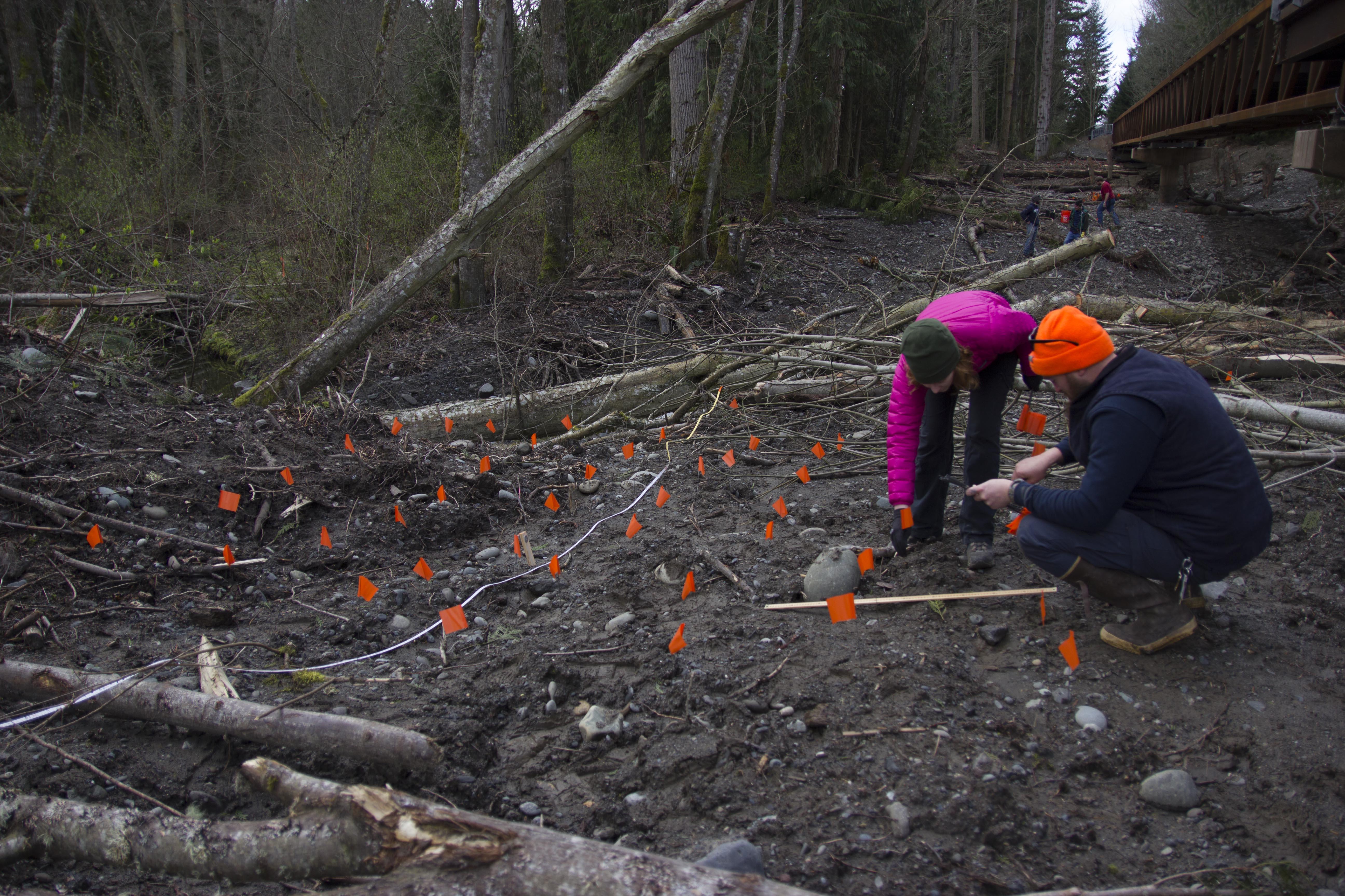 Jamestown S'Klallam Tribe, Colleges Partner on River Revegetation Work