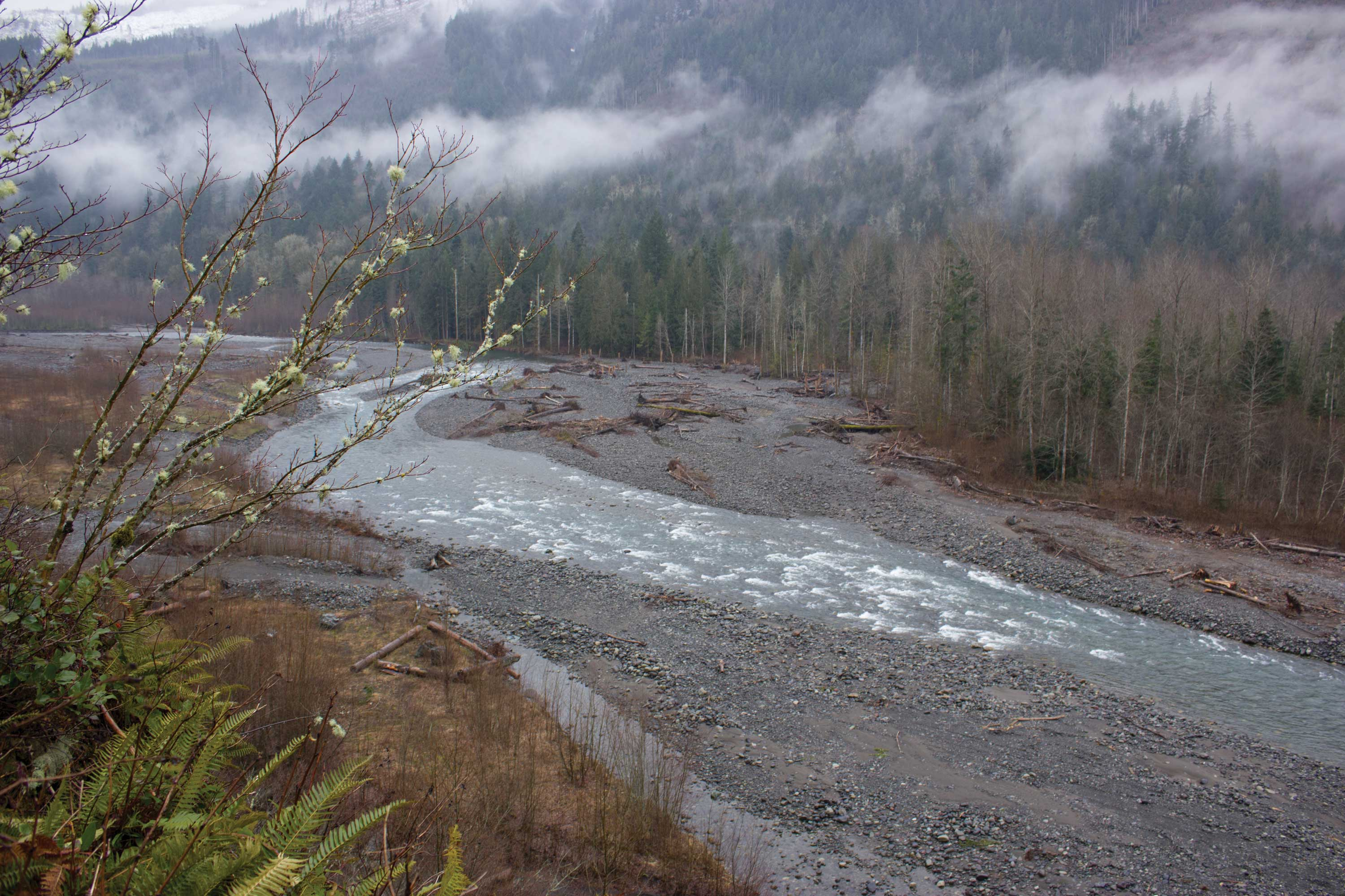 Logjam projects move forward on Nooksack River