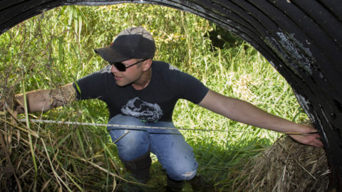 Culverts can cut off steelhead from habitat