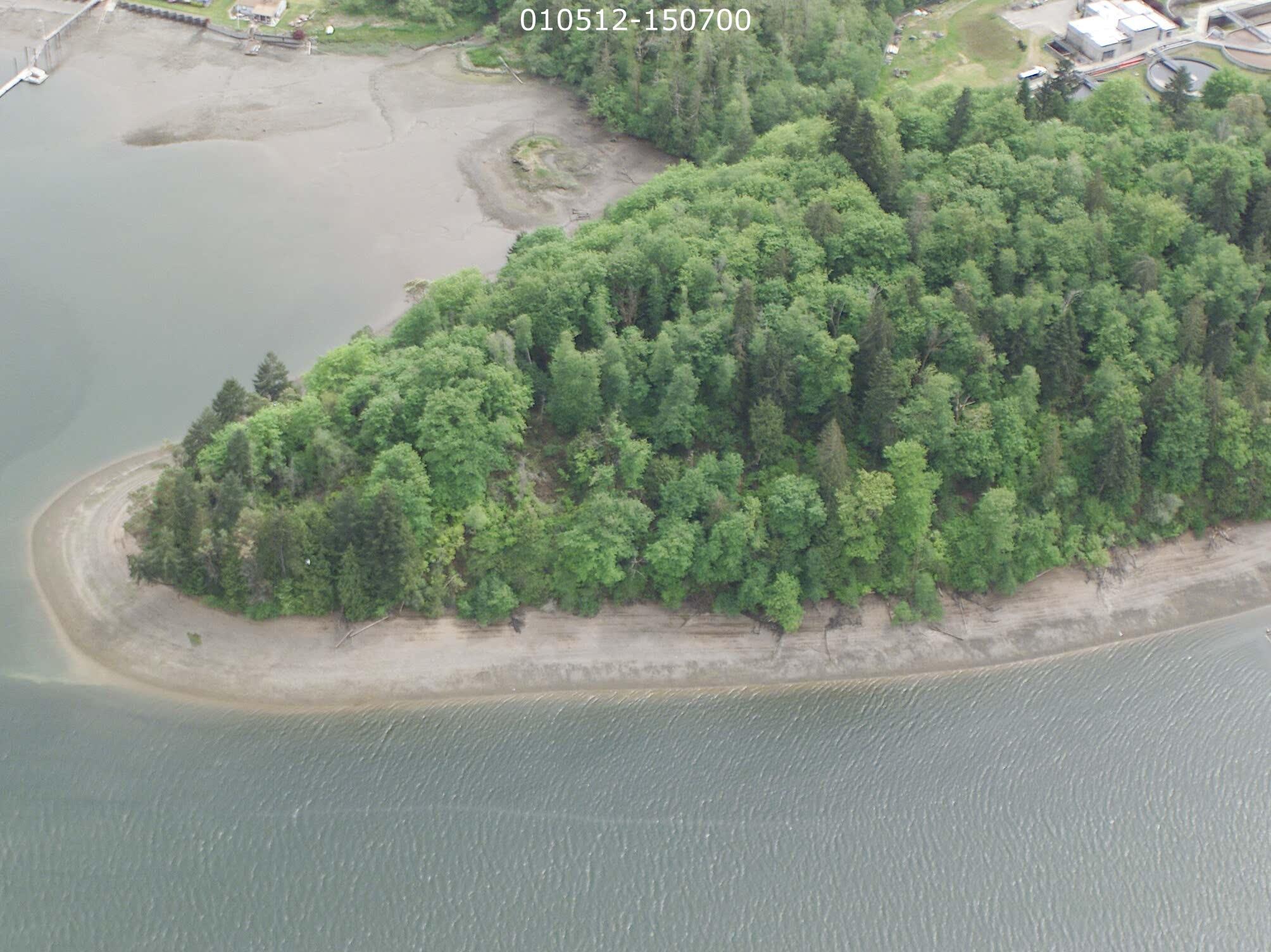 Salmon restoration results in park for Shelton