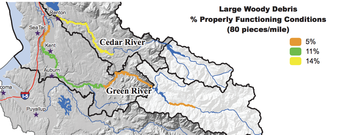 The Green River is missing 95 percent of the logs salmon need