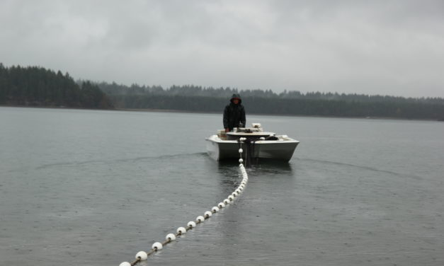 Fisheries disasters declared, impacting treaty tribes