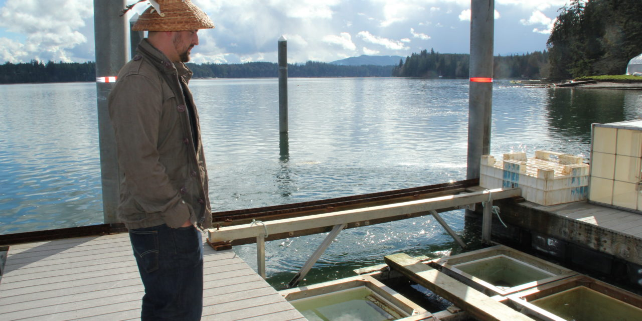 NW Treaty Tribes Magazine: Enhancement Programs Provide More Shellfish For Tribes, Economy