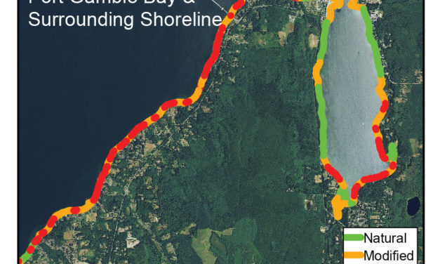 State of Our Watersheds: Altered Shorelines in Port Gamble Bay, Hood Canal