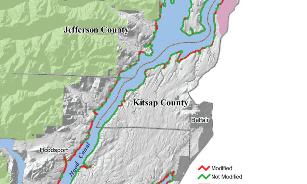 State of Our Watersheds: Shoreline Modifications Detrimental to Salmon Habitat