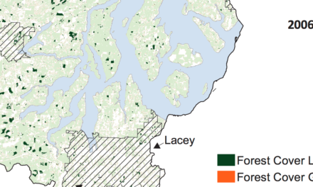 State of Our Watersheds: South Sound loses forest bigger than Olympia