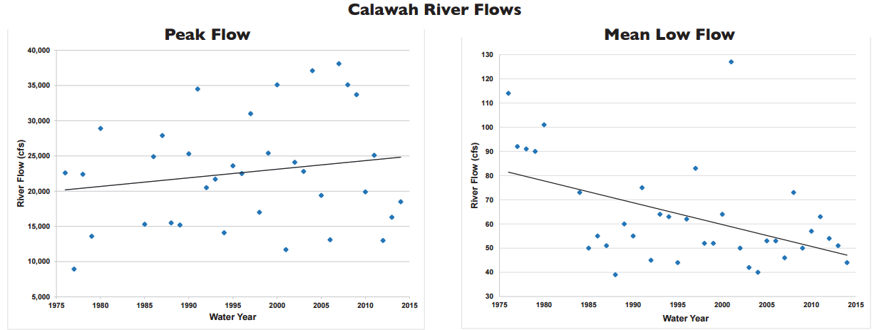 State of Our Watersheds: River flows hurt salmon on the Calawah River