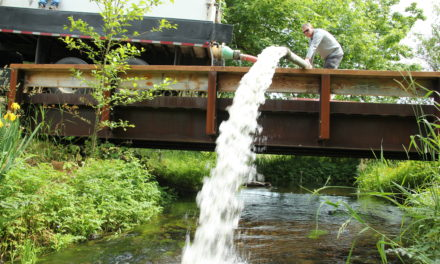 Keeping Deschutes coho from disappearing