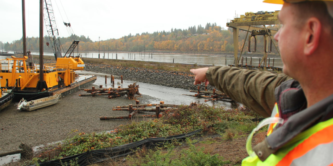 Logjams will help heal estuary in South Sound