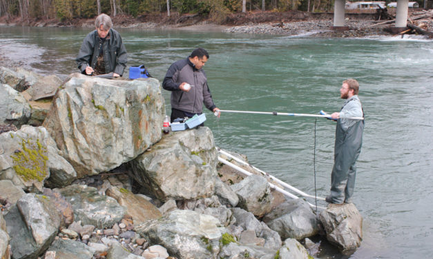 Sediment samples fill in the gaps for fishery managers