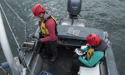 Monitoring Port Gamble Bay Sediment to Protect Herring Embryos
